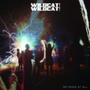 Wildcat! Wildcat! - No Moon at All