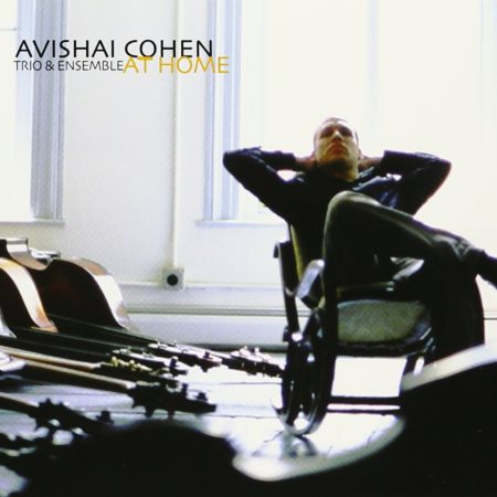 Avishai Cohen - At Home