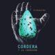 Technoanimal - Cordera Y La Caravana