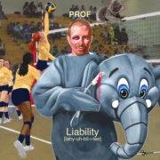 Prof - Liability