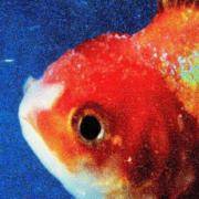 Vince Staples - Big Fish Theory
