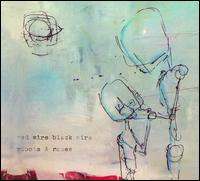 Red Wire Black Wire - Robots & Roses