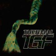 Teengirl Fantasy - Thermal