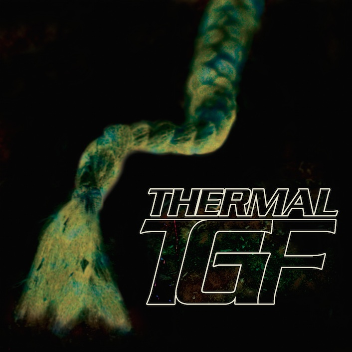 Teengirl Fantasy - Thermal