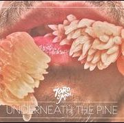 Toro y Moi - Underneath The Pine
