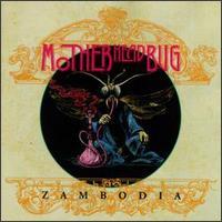 Motherhead Bug - Zambodia